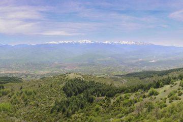 Hiking Vodno